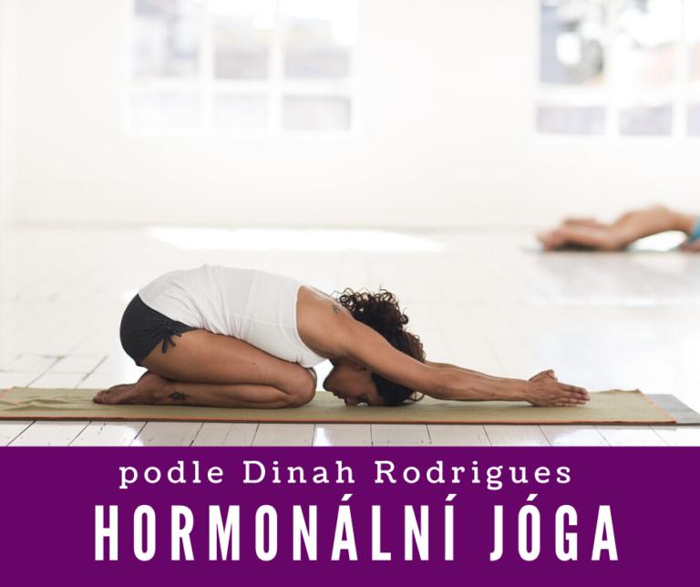 Hormonální jóga<br>každé úterý<br>celý leden<br>09:00 –11:00<br>2.800,-Kč<br>pro ženy
