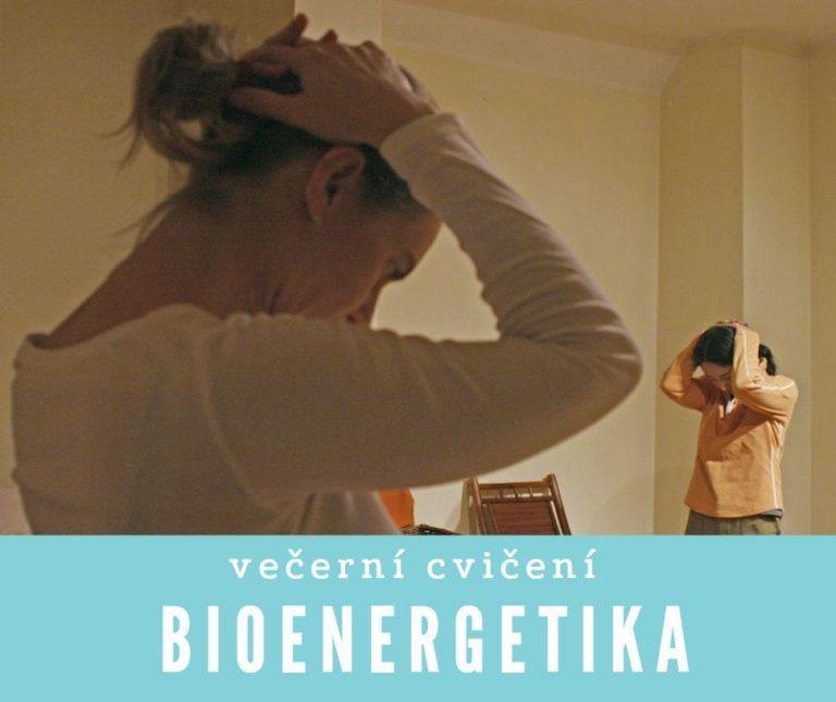 Předvánoční bioenergetika<br>večerní cvičení<br>16.12.2019<br>18:00 –20:00<br>350,-Kč<br>pro ženy, muže iděti